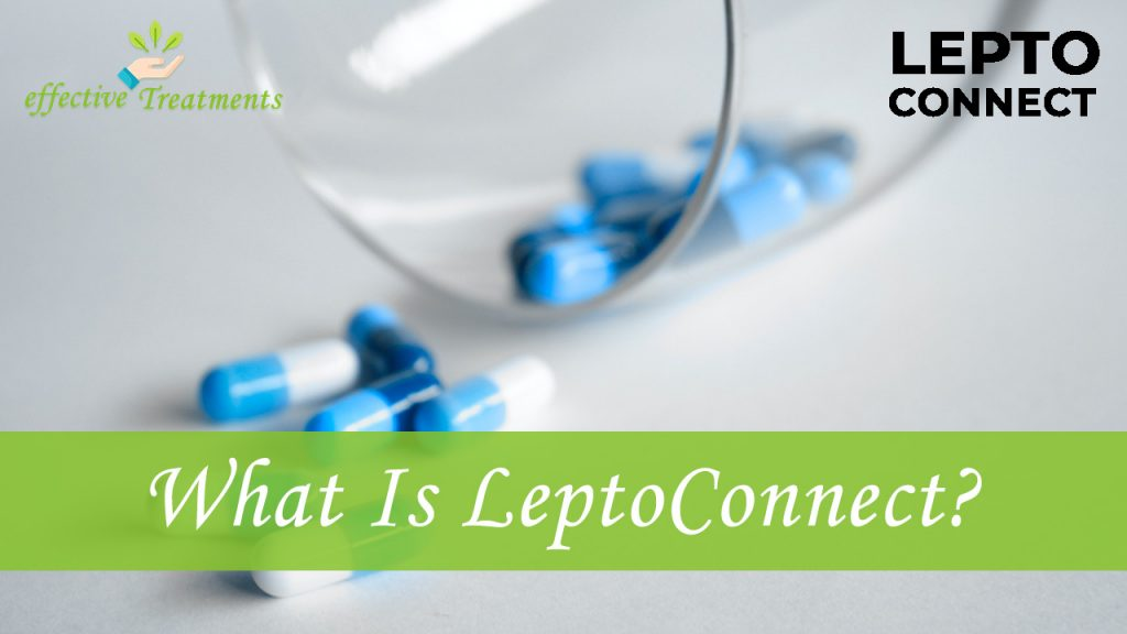 What is leptoconnect?