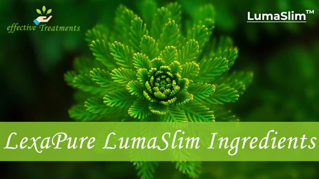 Lexapure Lumaslim ingredients