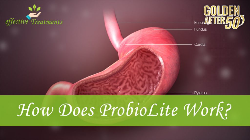 How does Probiolite work?