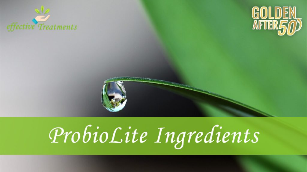 ProbioLite ingredients
