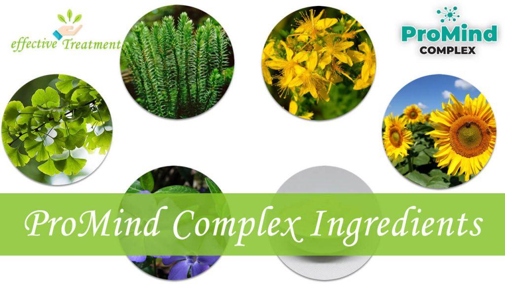 ProMind Complex ingredients