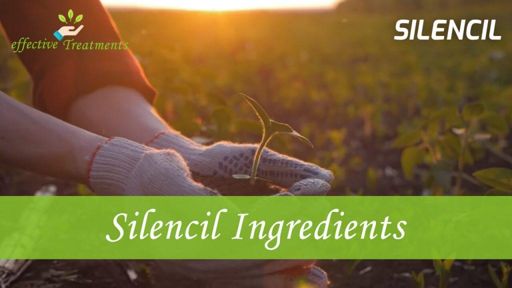 Silencil ingredients