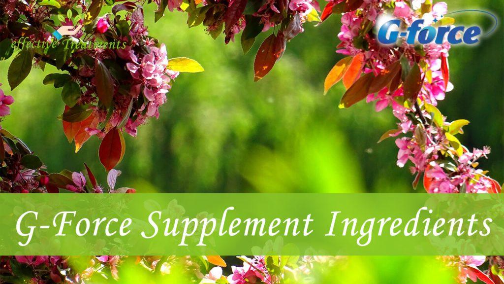 G-Force supplement ingredients