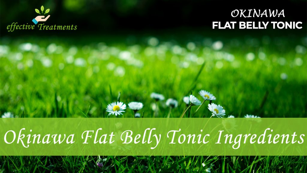 Okinawa Flat Belly Tonic ingredients