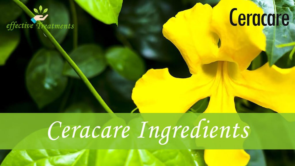 Ceracare ingredients