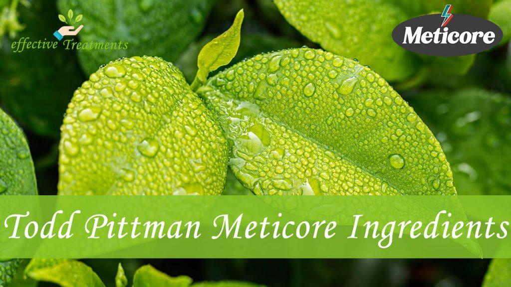 Todd Pittman Meticore Ingredients