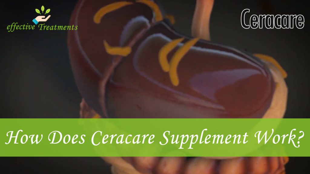 How does Ceracare supplement work?