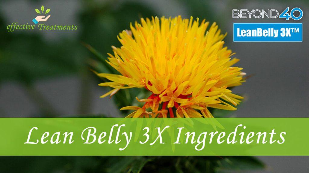 Lean belly 3x ingredients
