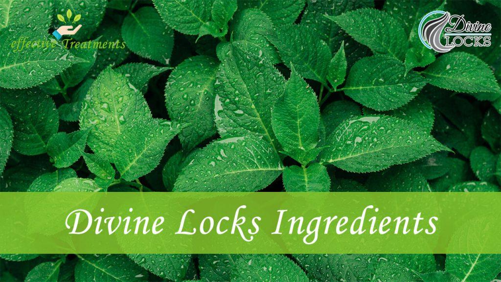 Divine Locks ingredients