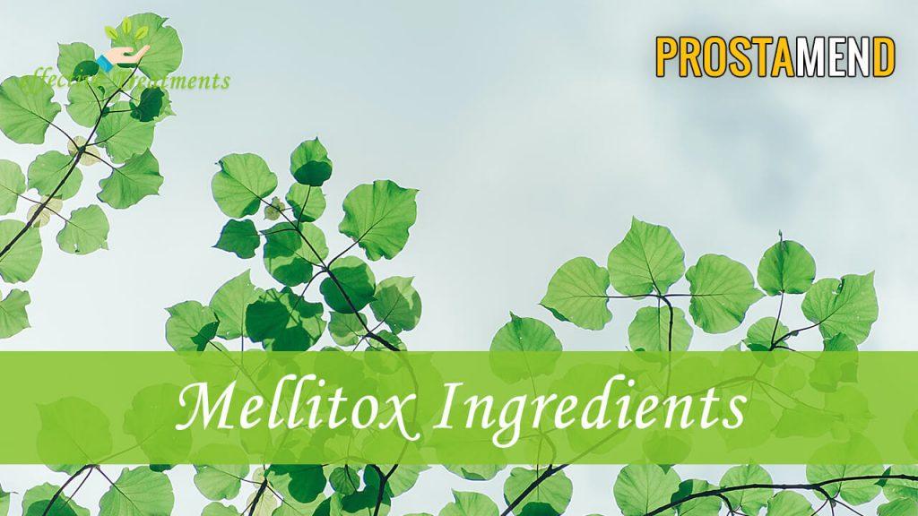 ProstaMend ingredients